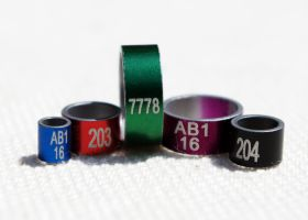 Coloured Aluminium Rings